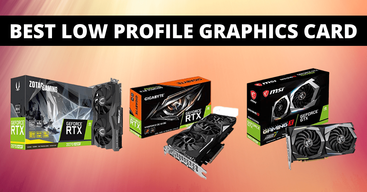 Read more about the article Low Profile Graphics Card – List of the Authentic Best